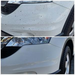 Toyota RAV4 - Oil and Tar Removal